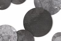 dimnewsbeltramifossilstone.jpg